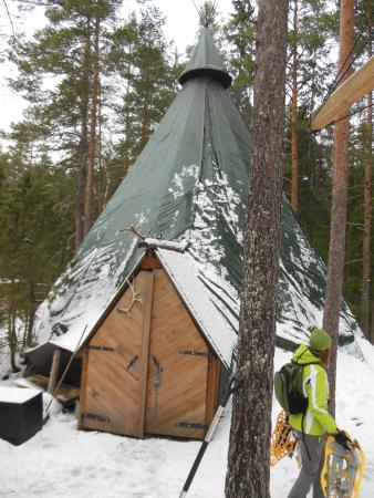 Finlandia meridionale, Finlandia: В парке