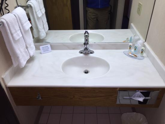 Quality Inn Oakwood: SINK