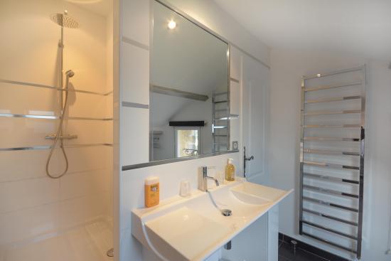 Entraigues-sur-la-Sorgue, Fransa: salle de bain nickel chrome