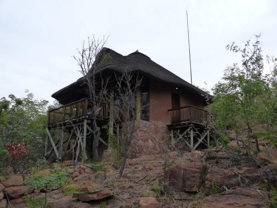 Tshwene Lodge: Chalet