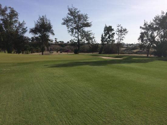 Campo de Golf Maspalomas: photo2.jpg