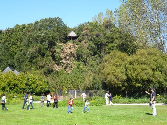 Coronel, Chili : Parque Jorge Alessandri