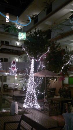 Nantra de Boutique: Наряжают елки на Новый год