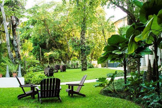 Casa Colonial Beach & Spa: Garden