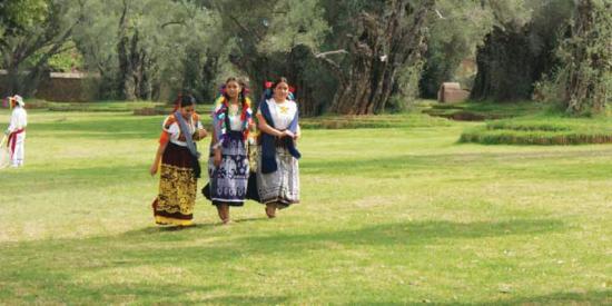 Tzintzuntzan, Meksyk: patio atrio del aiglesia lleno de arboles de olivo