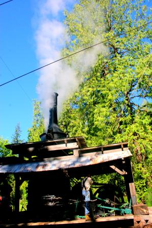 Port Alberni, Canadá: blowing off steam.