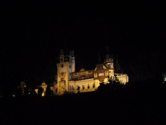 Bastion Hotel : Peles castel at night, just few minutes to walk uphill