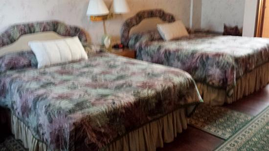 Port Elgin, Canadá: great beds