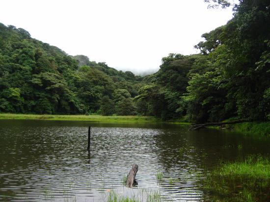 Heliconias Lodge: Ecxelente tour ala laguna danta, antiguo crater del tenorio.