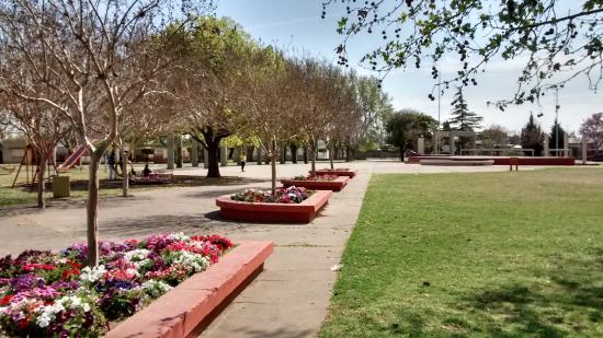 Casilda, الأرجنتين: canteros con flores