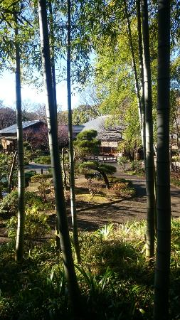 Tokorozawa Aviation Memorial Park: 日本庭園