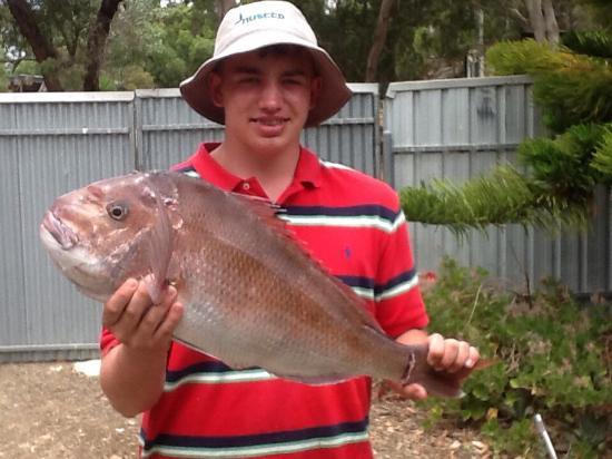 Emu Bay Fishing Charters - Private Charters: photo0.jpg