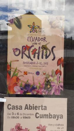 Ecuagenera - Orchids from Ecuador: World Orchid Conference - Nov 2017 in Guayaquil