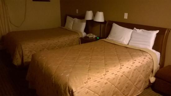 Cape Shore Inn : Room