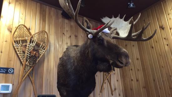 Arlington, WA: The merry Moose of Moose Creek BBQ.