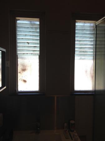 Inglewood, Australia: Bathroom Windows.