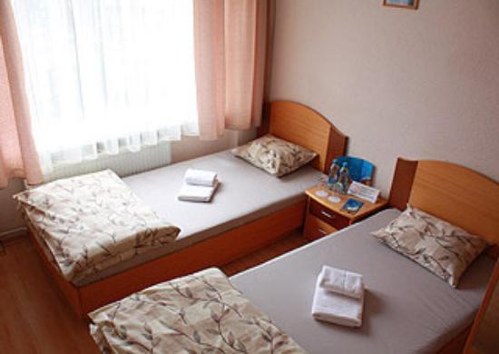 Hotel Jurnieks : Двухместный номер