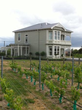 Martinborough Vineyard : photo1.jpg