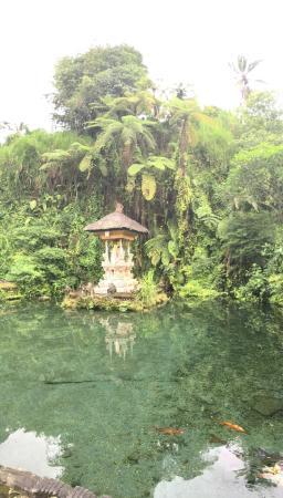 Agus Bali Private Tours: photo1.jpg