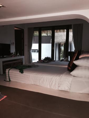 Mimosa Resort & Spa: photo2.jpg
