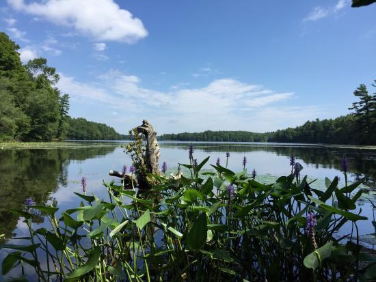 Lake Whitehall State Park