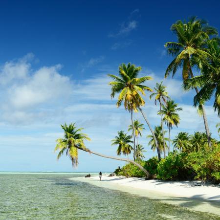 North Huvadhu (Gaafa Alifu) Atoll: Nuestro viaje a Maldivas en Pearl Beach View durante Diciembre de 2015!!