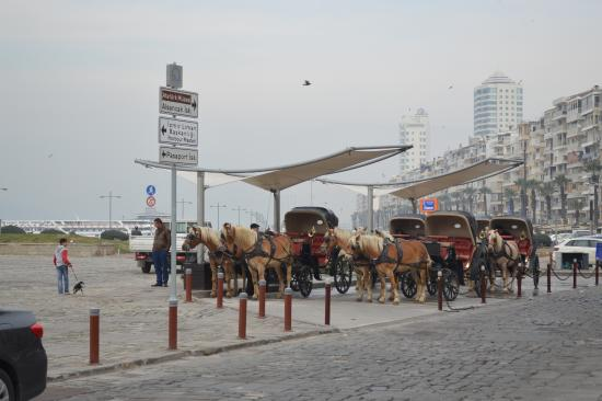 Alsancak : Horse carriages wating for patrons.