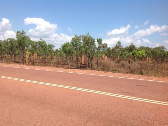 Weipa, Australia: photo5.jpg