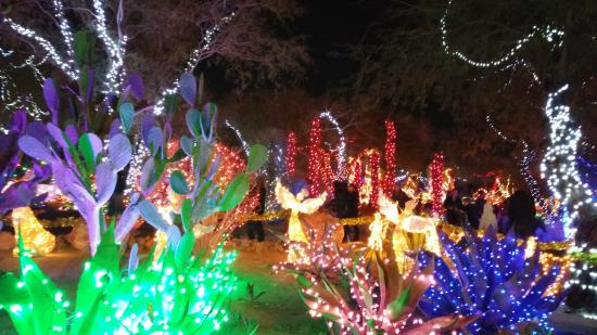 Christmas lights at the cactus garden in henderson nv - Ethel m cactus garden christmas 2017 ...