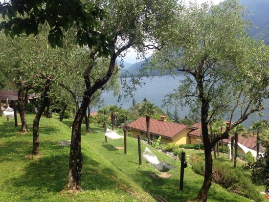 Residenza Lago di Lugano : photo0.jpg