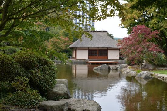 japanische garten park planten un blomen