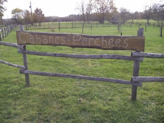 panneau d\'accueil - Photo de Cabanes Perchées dans les Arbres ...