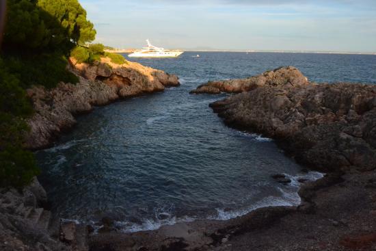 Costa d'en Blanes, Spanien: Snorkling start pois