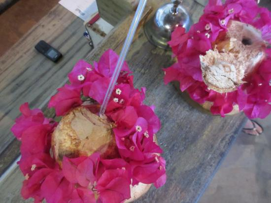 Ocean Sports Resort: Fresh coconut water Welcome! drink