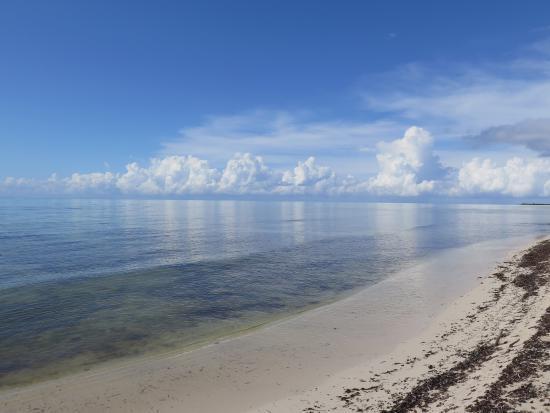 Punta Sur Eco Beach Park: photo0.jpg