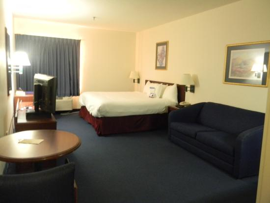 La Quinta Inn & Suites Cedar Rapids: King Size Bed w/Fold Out Sofa Bed