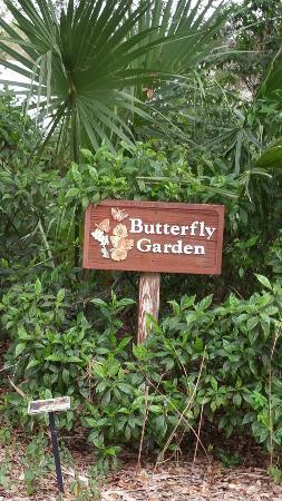 Arthur R. Marshall Loxahatchee National Wildlife Refuge : Beautiful