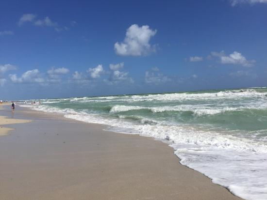 Four Points by Sheraton Miami Beach: photo4.jpg