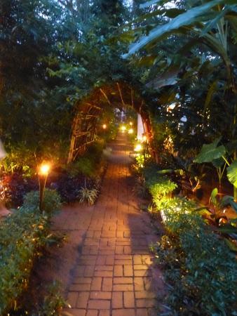 Muang La, Laos: Jardin