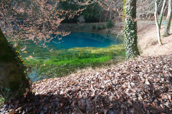 Блаубойрен, Германия: Озеро