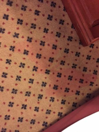 Harrah's Resort Atlantic City: Stains on the carpet