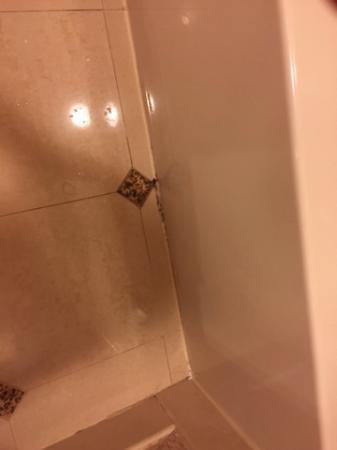 Harrah's Resort Atlantic City: mold on bathroom floor