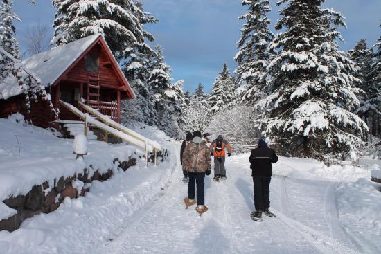 Isabella, MN: Snowshoeing