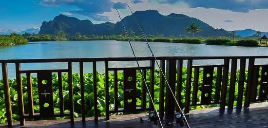 Jurassic Mountain Resort & Fishing Park : Stunning Lake Views