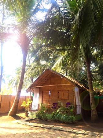 My beautiful bungalow