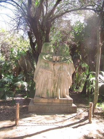 Arbre de tarzan photo de le jardin d 39 essai du hamma for Decoration jardin alger