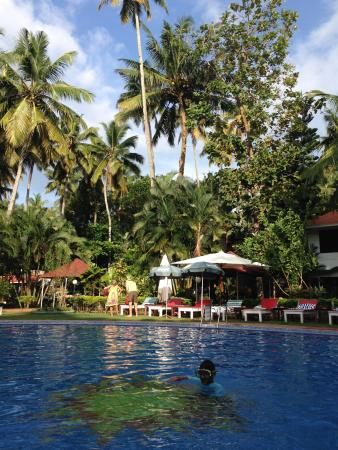 Akhil Beach Resort: Pool with garden