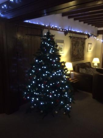 Little Silver Country Hotel: Beautiful Christmas Tree