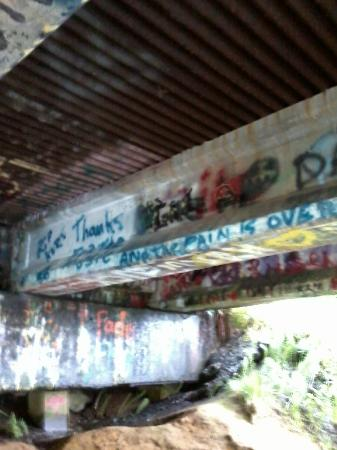 Kurt Cobain Memorial Park: Underneath Young Street Bridge