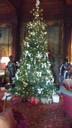 Beautiful christmas tree picture of cliveden house House beautiful christmas trees